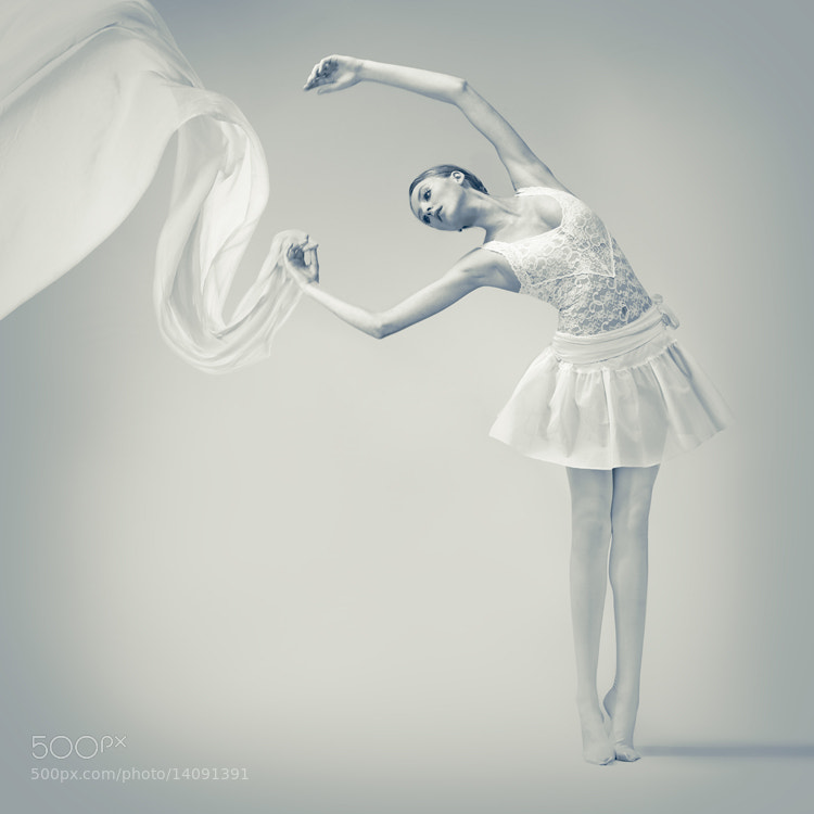 Photograph white by Joanna Kustra on 500px