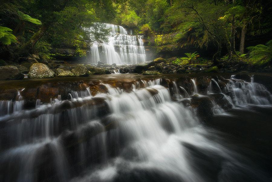 Liffey Falls II by Matt Donovan on 500px.com