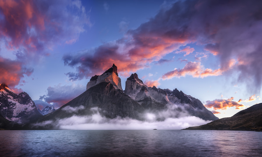 Enter The Dragon by Timothy Poulton on 500px.com