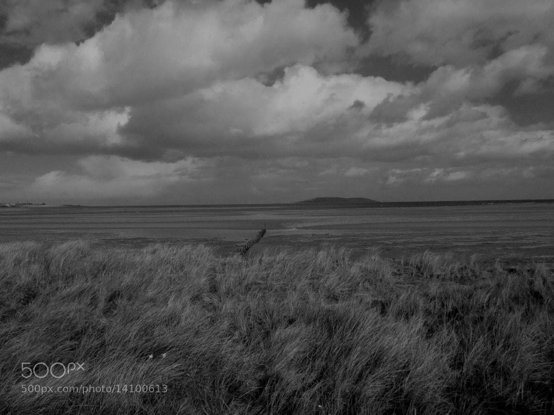 Photograph Lambay Island,Dublin by Audrey H on 500px