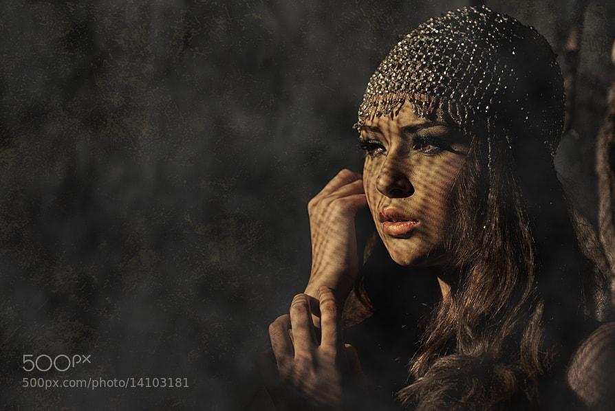 Photograph Twilight Elegy by Mieke Suharini on 500px