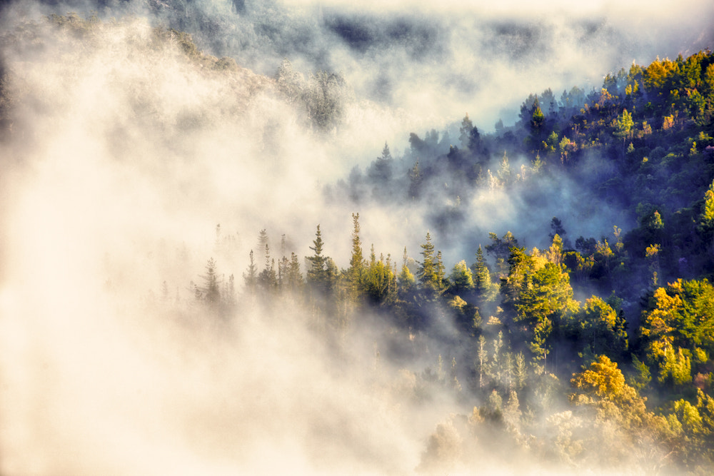 Photograph Misty Morning by Mario Moreno on 500px