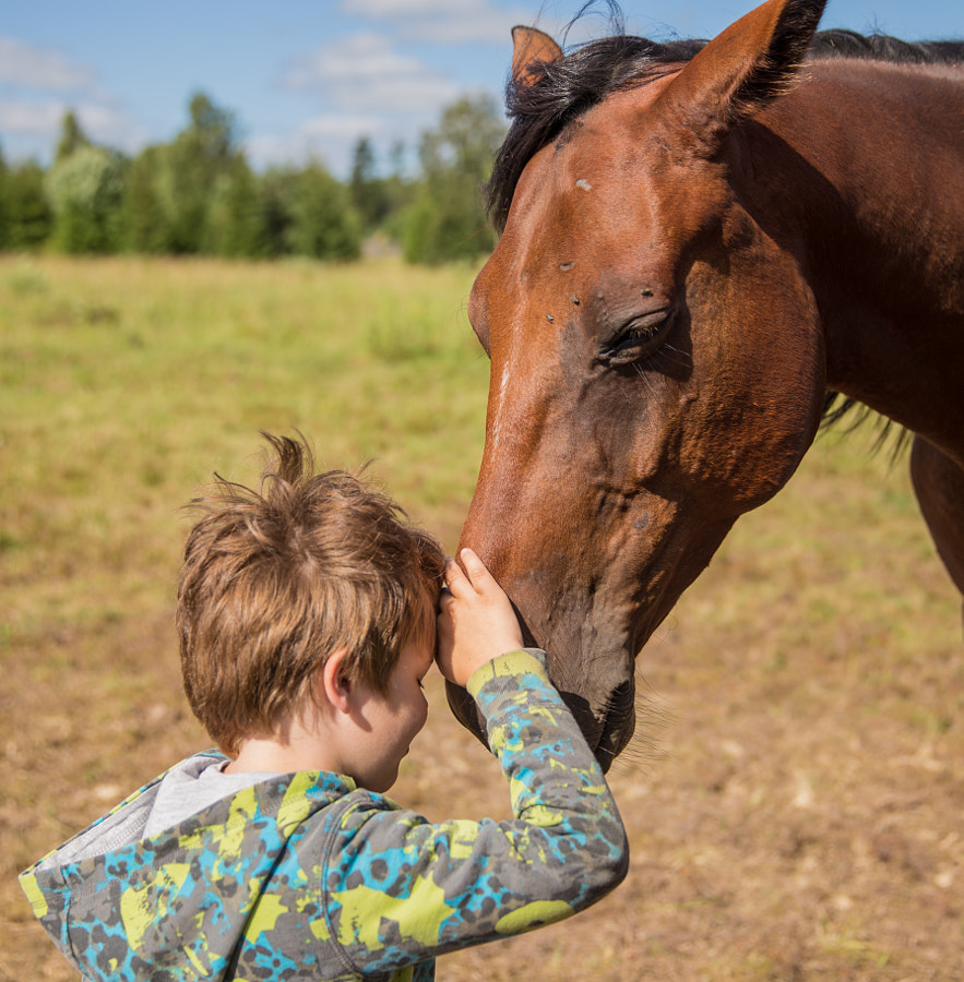 The Horse Whisperer by Triin Jagomägi on 500px.com