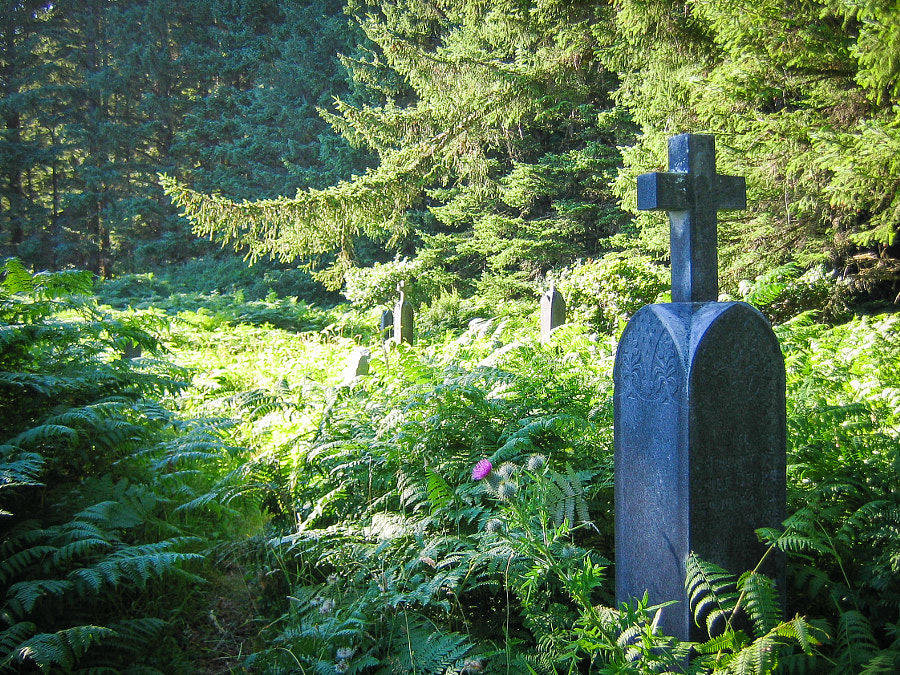 Friendly Cove Cemetery by John Poltrack on 500px.com