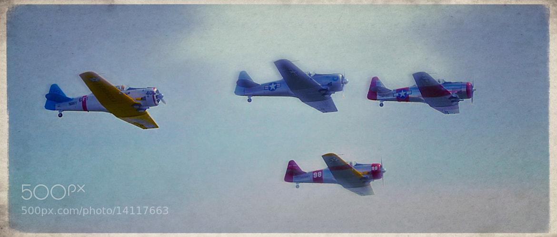 Photograph War Birds 3 by Xhristofer Le'Ur on 500px