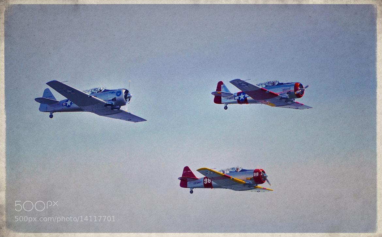 Photograph War Birds 1 by Xhristofer Le'Ur on 500px