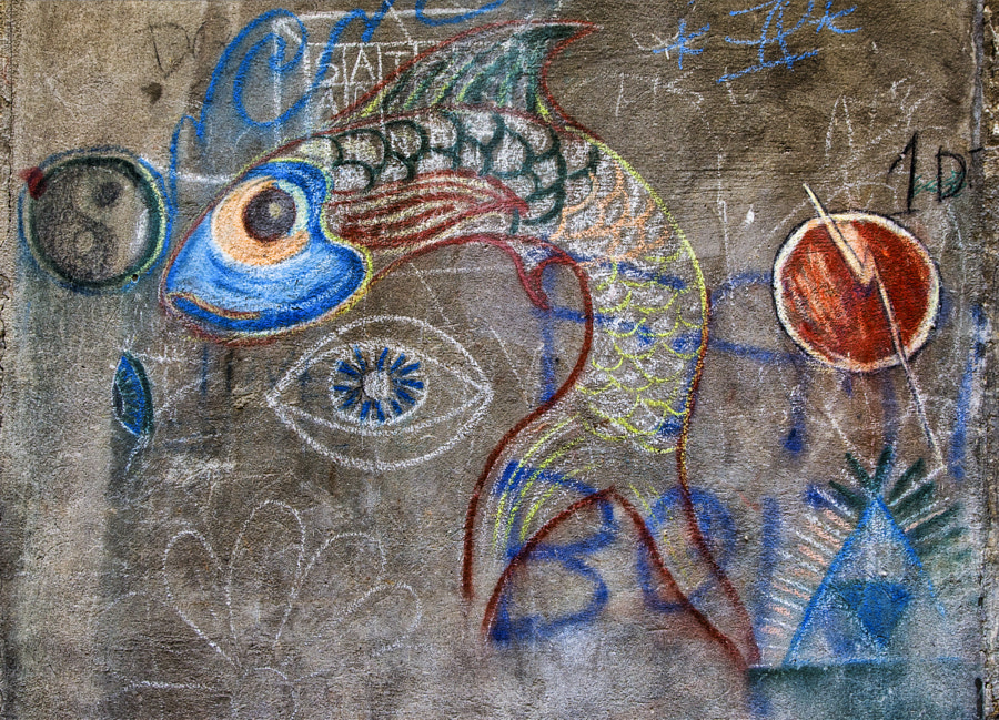 Fish graffiti 2