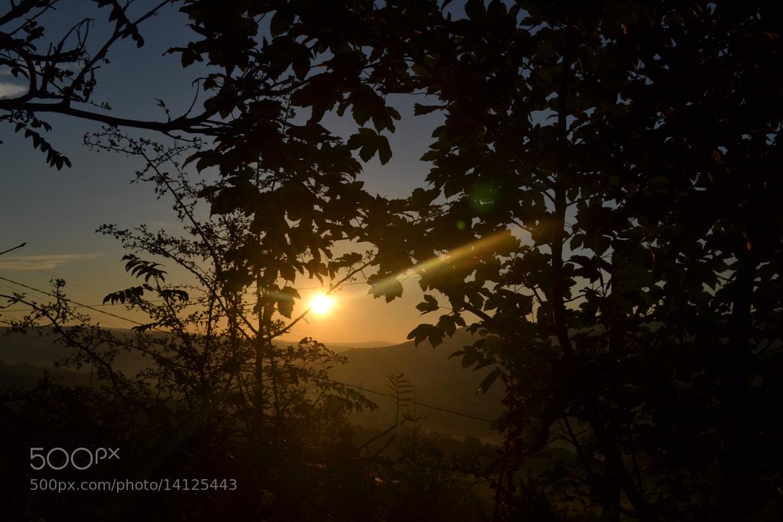 Stephanie Fletcher Show me the photo photograph sunrise by stephanie ...