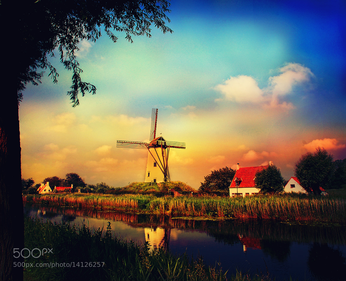 Photograph the windmills of your mind by jesuscm ► on 500px
