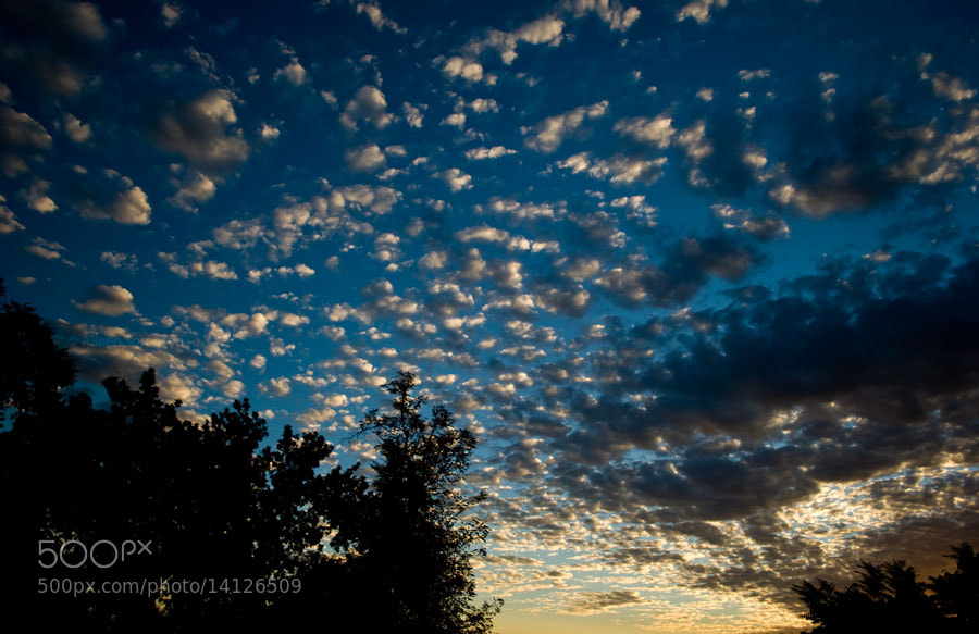 Photograph Morning view by Aileen Sorenson on 500px