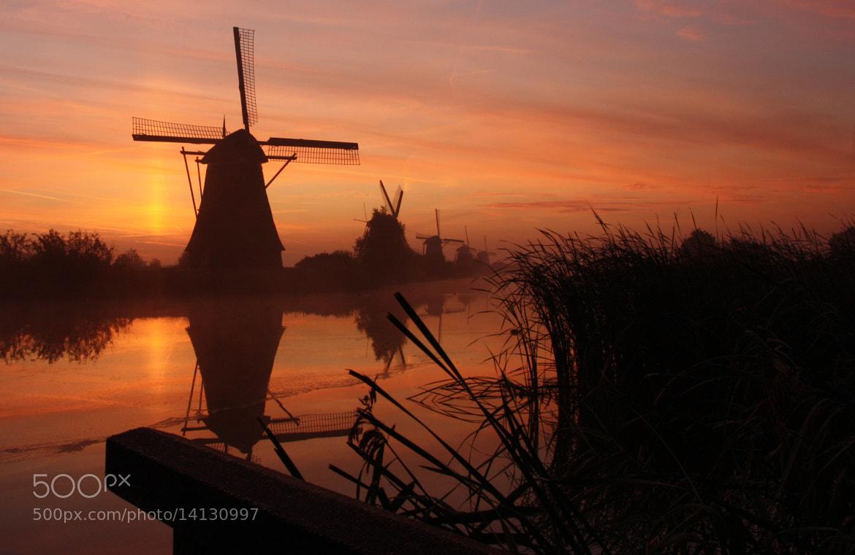 Photograph Kinderdijk morning by Ilya Korzelius on 500px