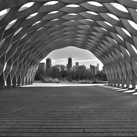 Honeycomb View B&W