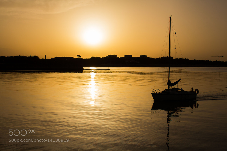 Photograph Coucher de soleil sur le port de La rochelle by vincent viargues on 500px