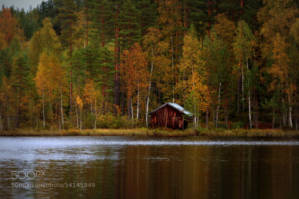 Photograph By the lake by Peter Engman on 500px
