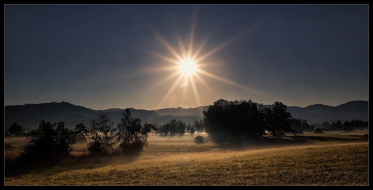 Photograph golden morning by Sandra Löber on 500px