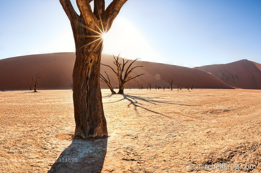 Photograph Deadvlei, Namibia Sunrise | Landscape Photography by Mitchell Krog on 500px