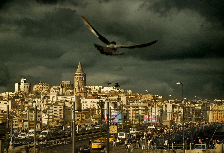 Photograph Galata Tower by Deniz KARACAN on 500px