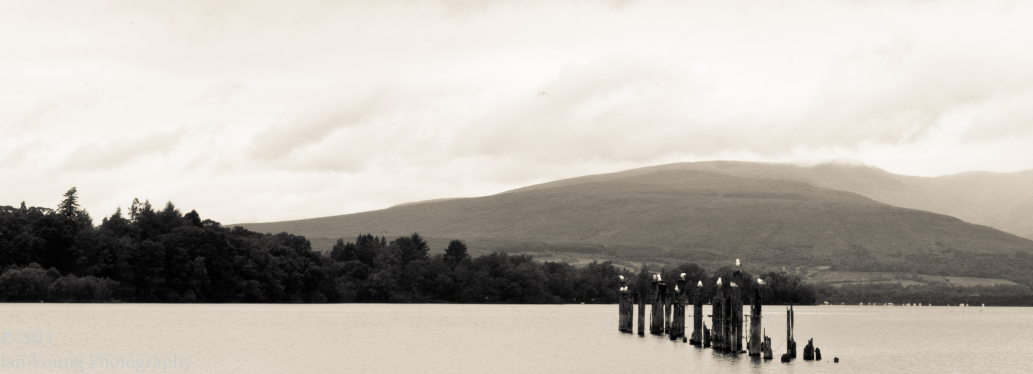 Photograph Loch Lomond Shores by Ian Young on 500px
