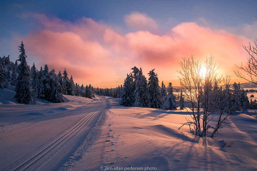 Skiing into the morning light by Jørn Allan Pedersen on 500px.com