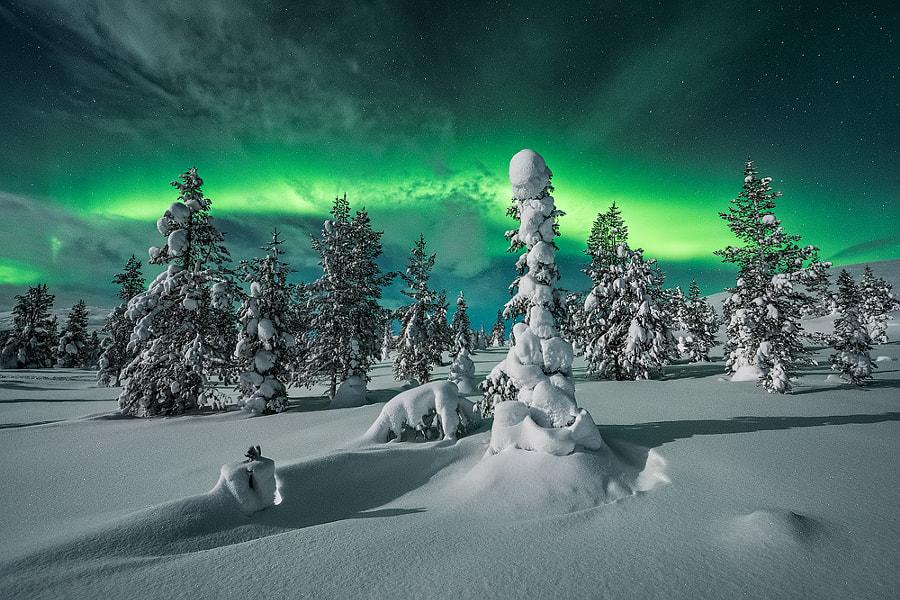[ … polar night ] by Raymond Hoffmann on 500px.com