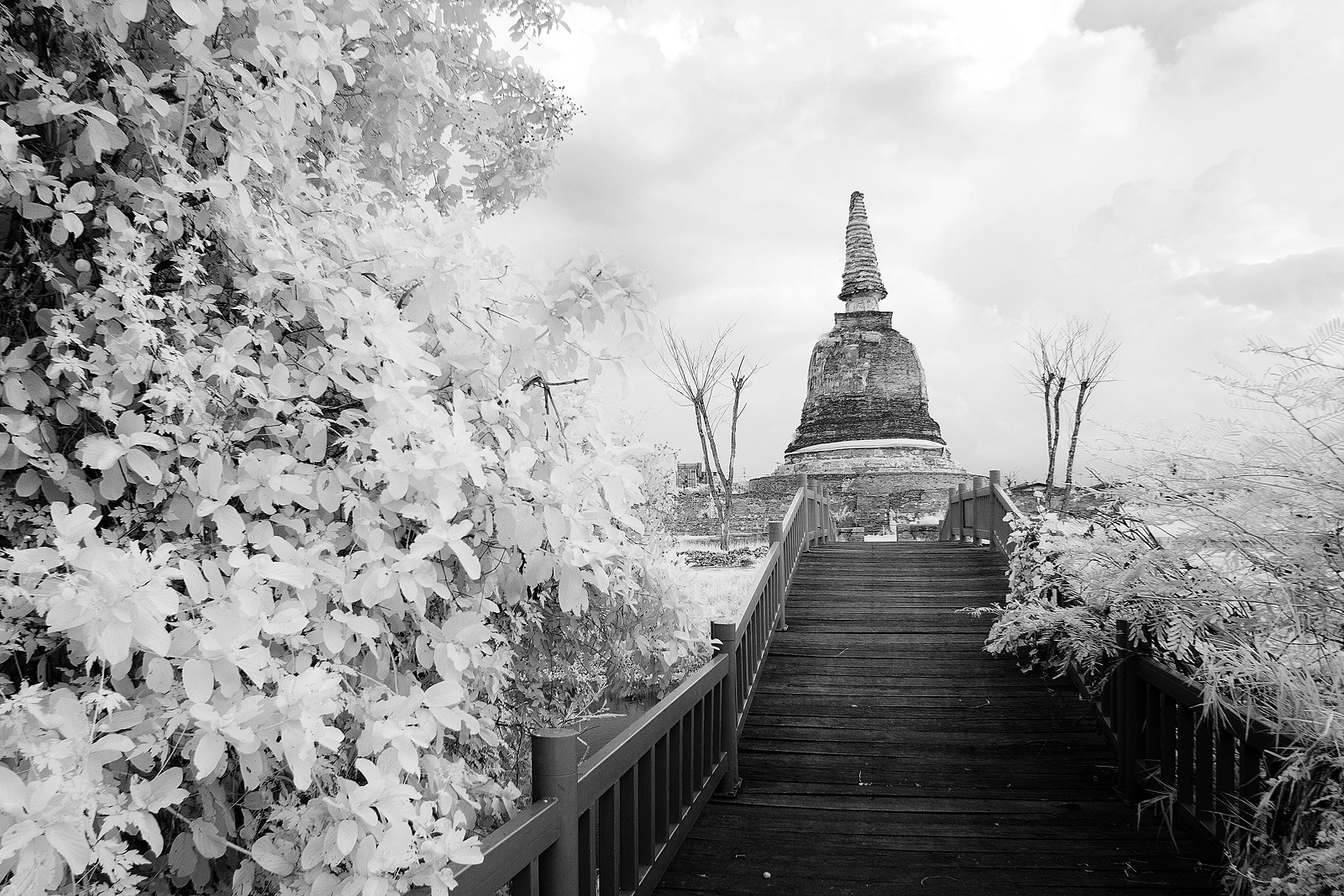 Photograph Pagoda Infrared by Nara Postcardonline on 500px