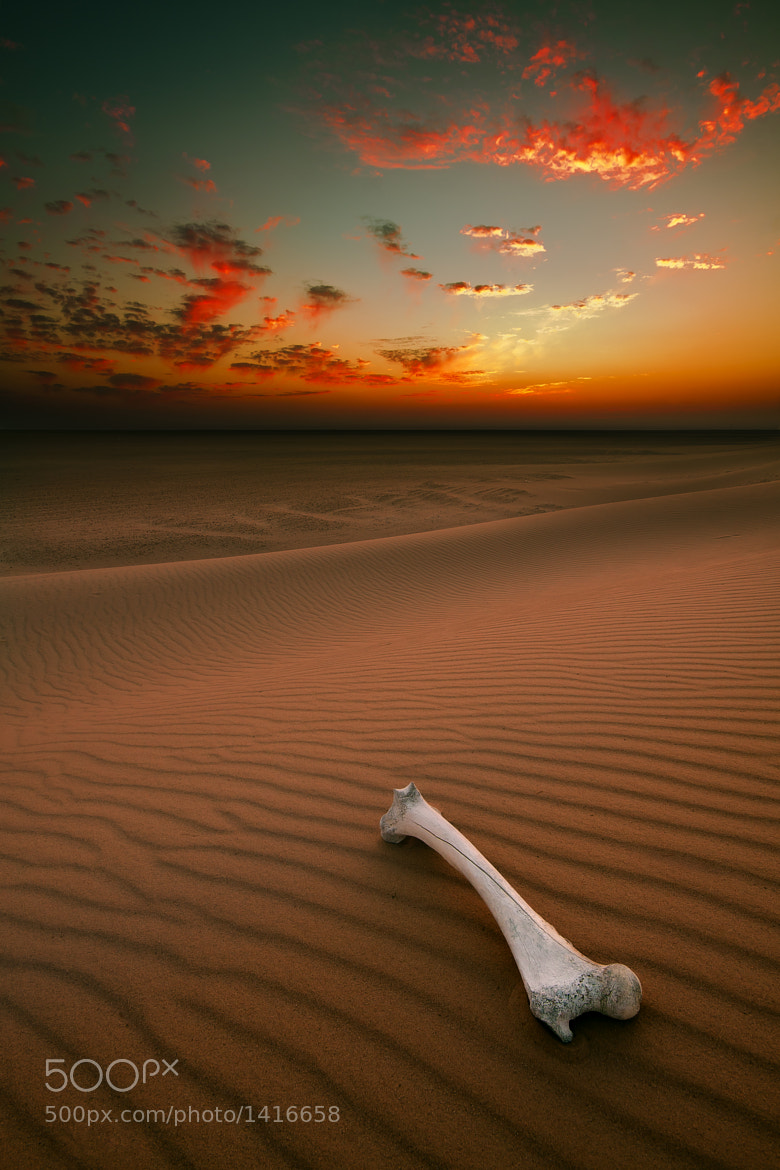 Photograph Desert by Mohammed ALSULTAN on 500px