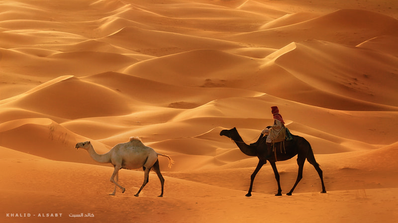 Photograph TRAVELER ALONE    by KHALID ALSABT on 500px