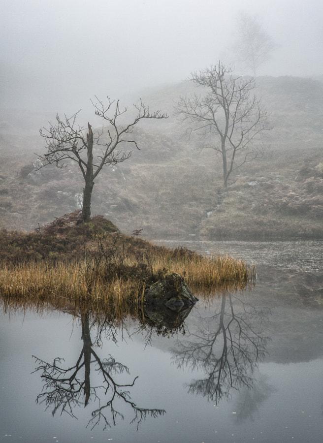 Holme Fell reflection