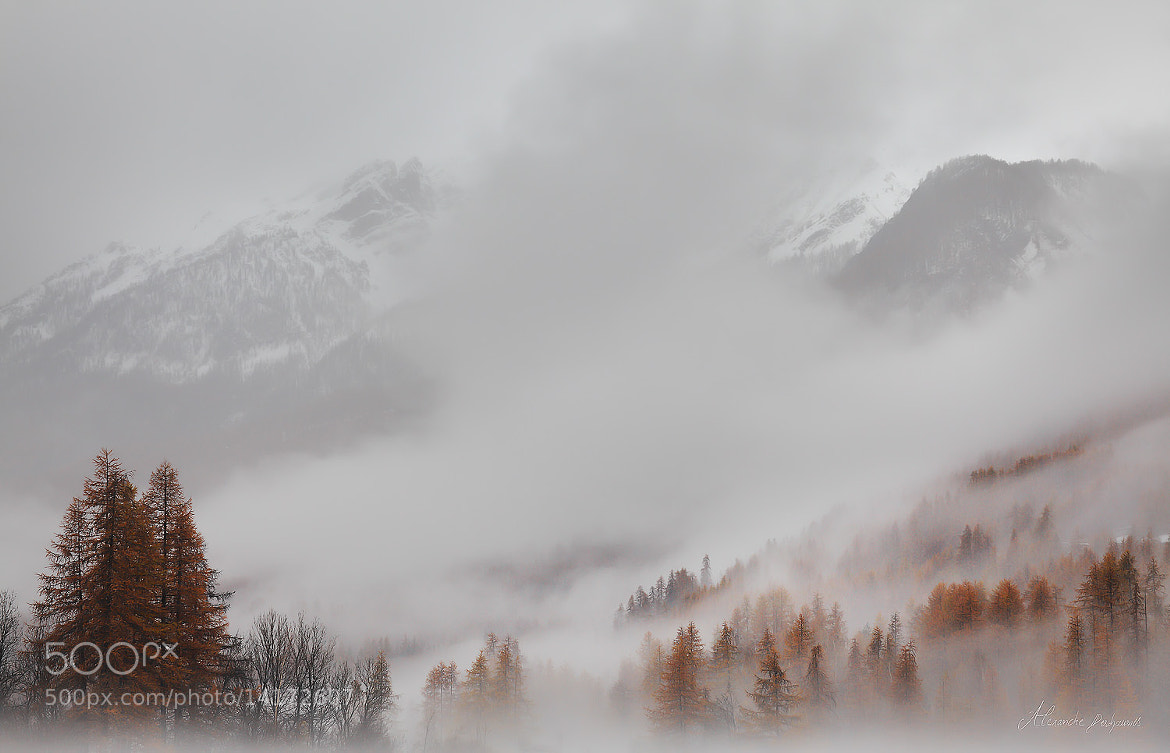 Photograph Ode to Melancholy by Alexandre Deschaumes on 500px
