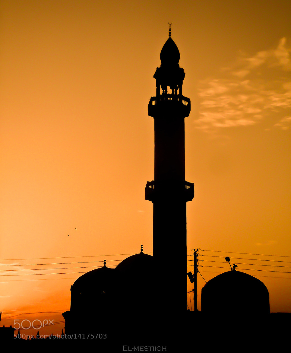 Photograph Mosque by Mohamed  El-mestiich Saadi  on 500px