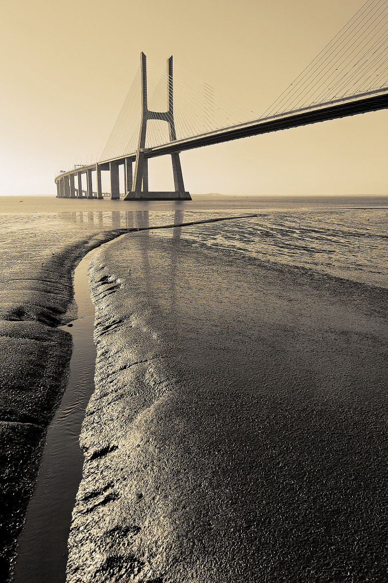 Photograph The artery. by Miguel Silva on 500px