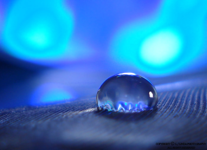 Photograph blue night drop by Linda photography on 500px