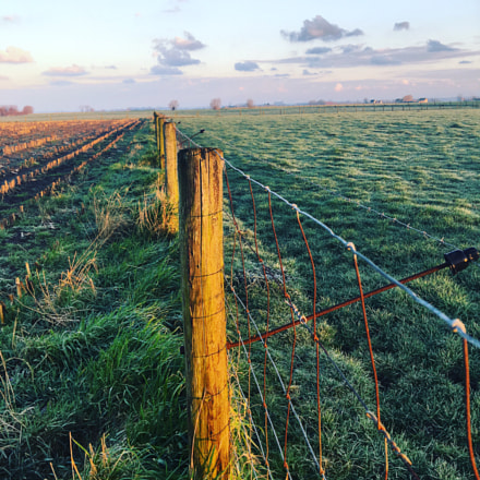 Early morning in the belgian countryside!