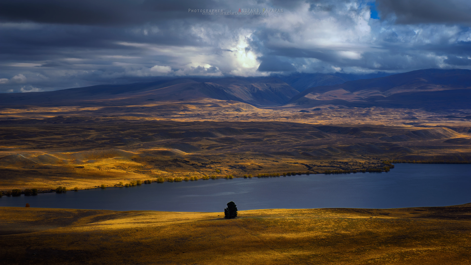 Photograph Lonely Tree by Anuparb Papapan on 500px