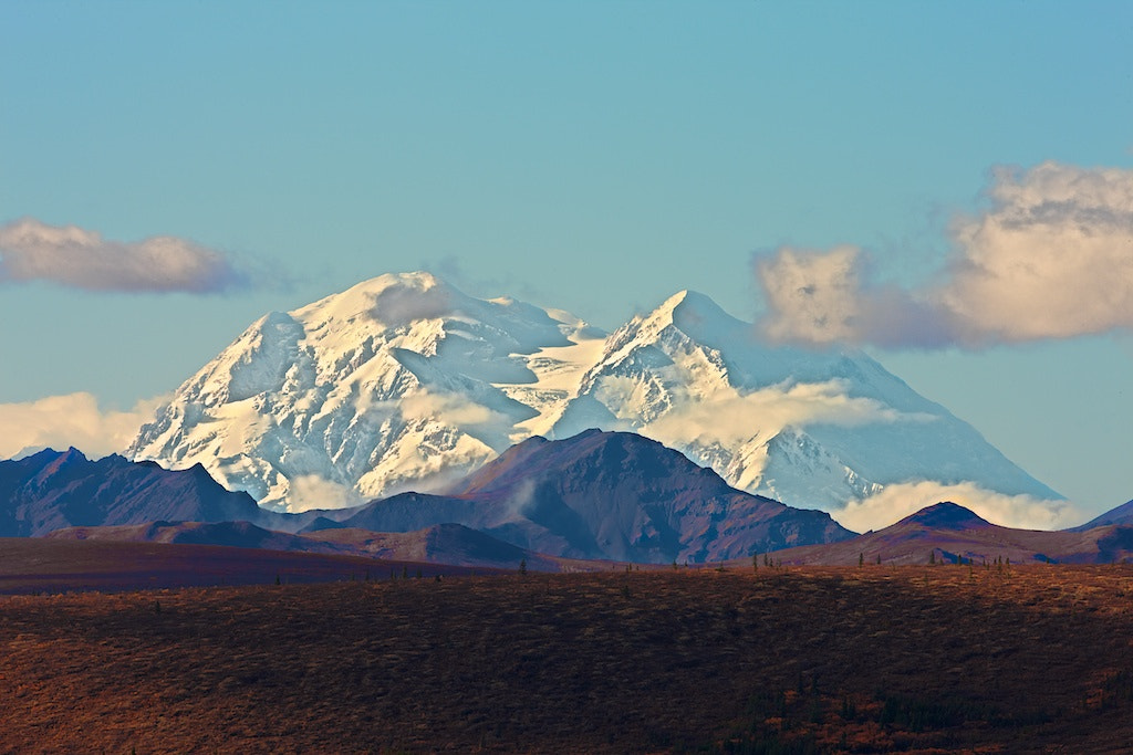 Photograph Denali by Buck Shreck on 500px