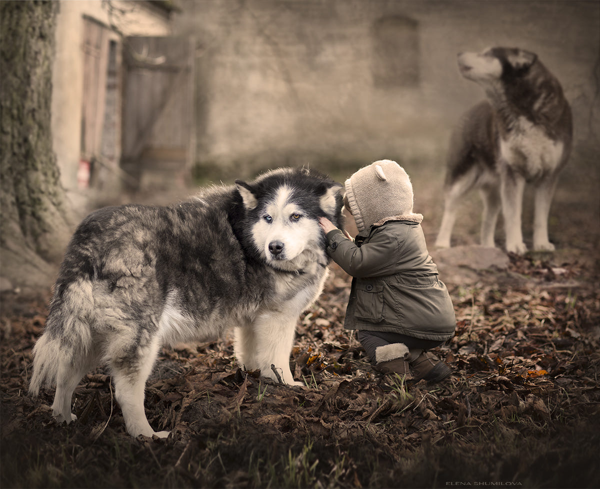 ...You know all my secrets.. (Poland) by Elena Shumilova on 500px
