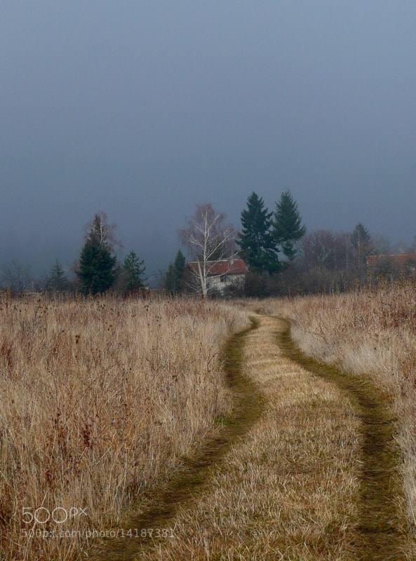 Photograph * by Martin Zeinelov on 500px