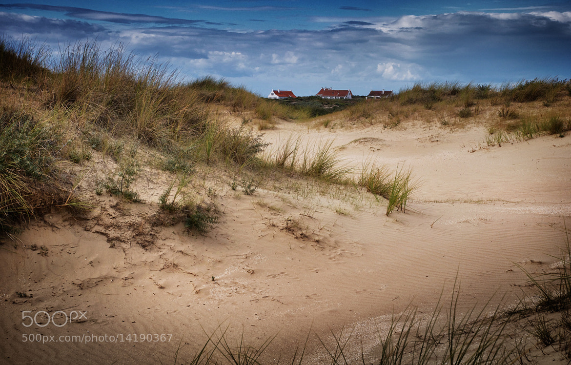 Photograph Dunes by Rudy Denoyette on 500px