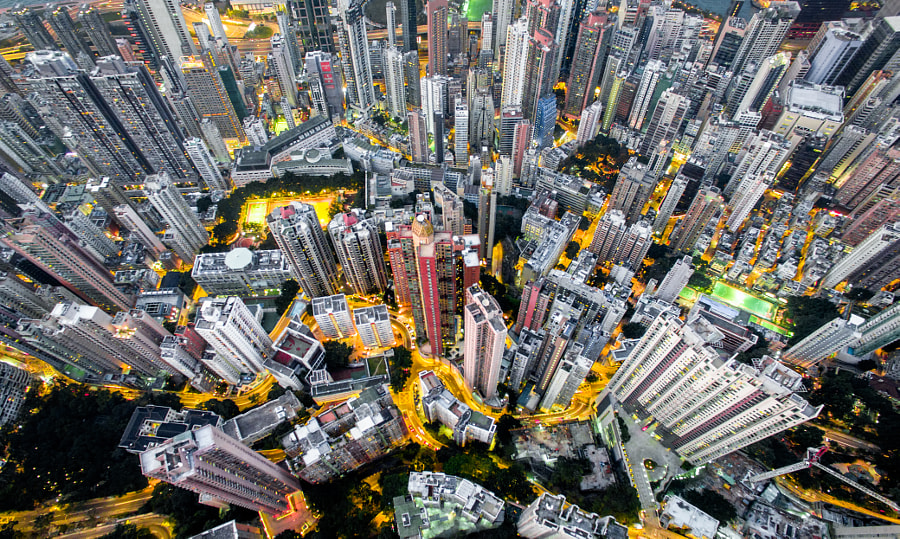 Urban Jungle #04 by Andy Yeung on 500px.com