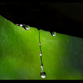 Untitled by Nishith Ramchandran (onlinecreators)) on 500px.com