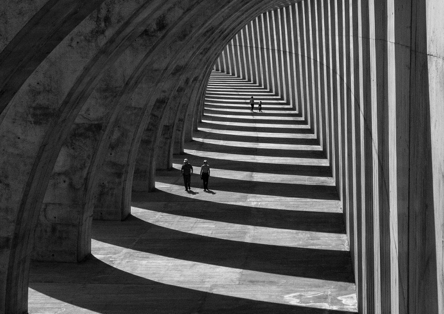 Lines by Georgie Pauwels on 500px.com
