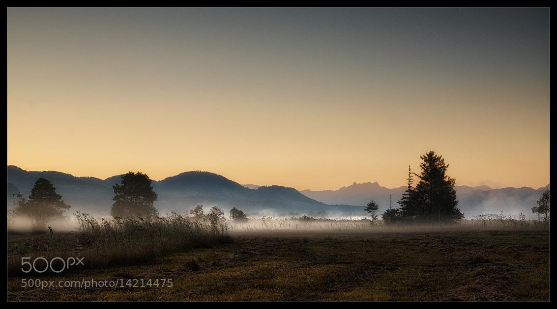 Photograph morning mist by Sandra Löber on 500px
