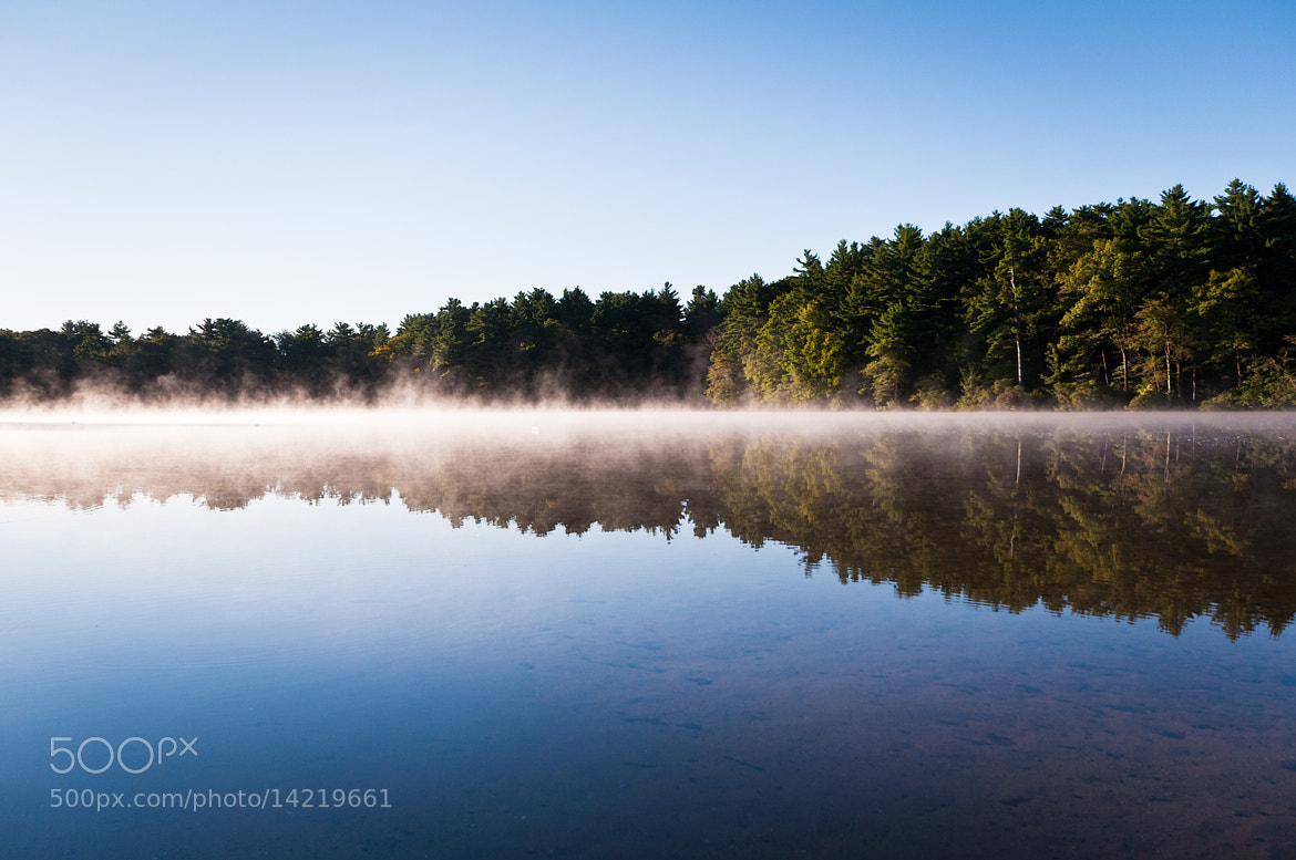 Photograph A Foggy Morning at the Lake by Lee Costa on 500px
