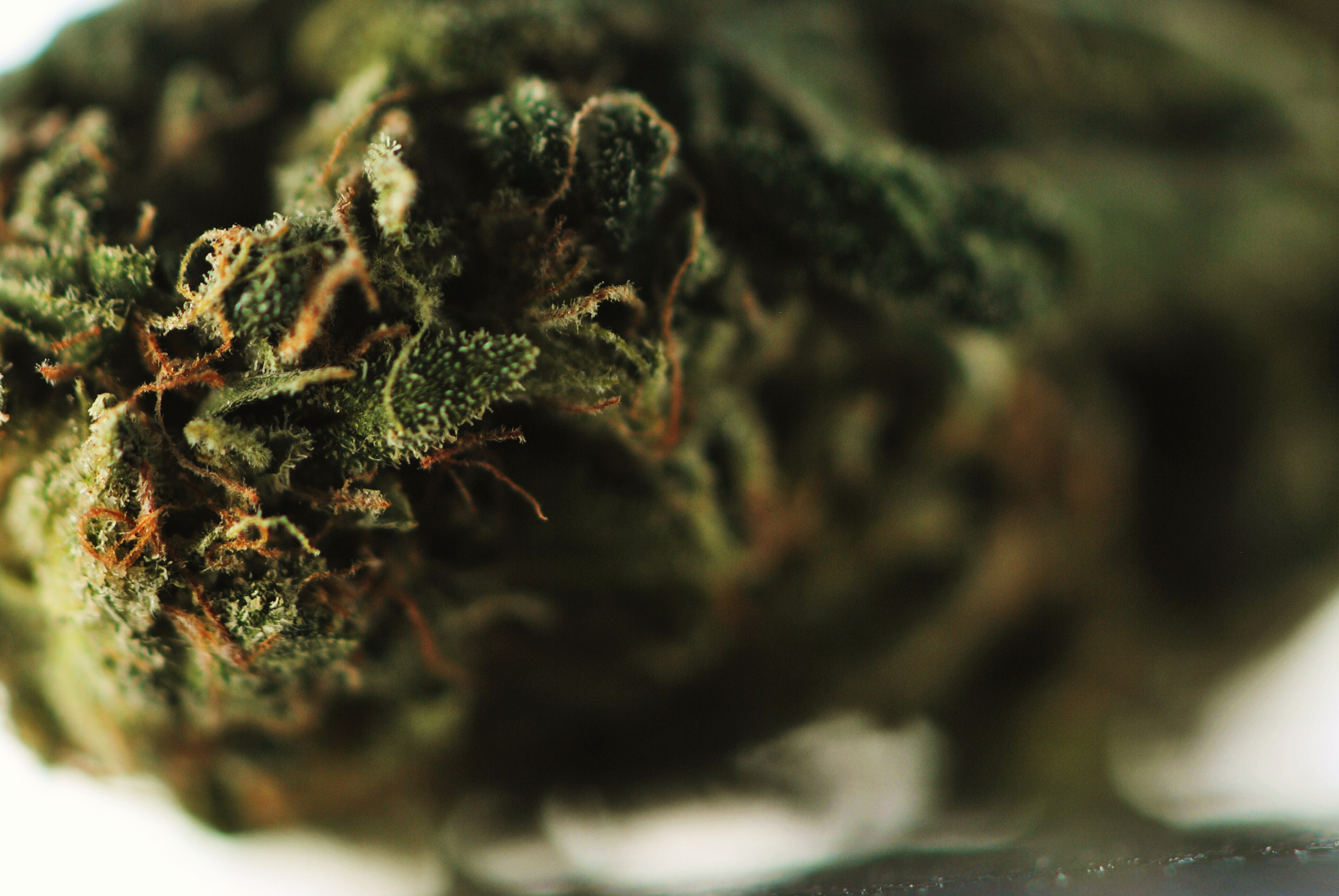 Photograph Sour Diesel by Anthony Mark on 500px