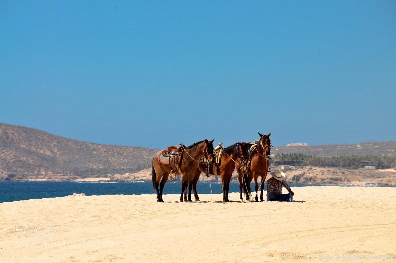 Photograph Mar y Desierto by Rafael Zubillaga on 500px