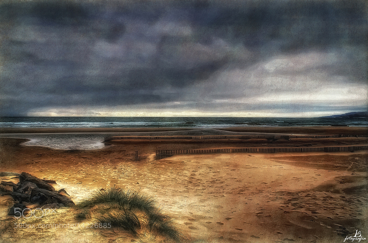 Photograph Autumn in the sea by Manuel Lancha on 500px