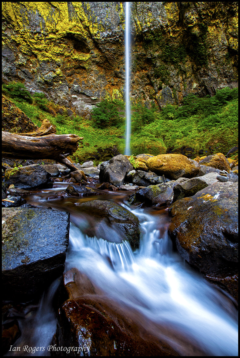 Photograph Low Flow at Elowah by Ian Rogers on 500px