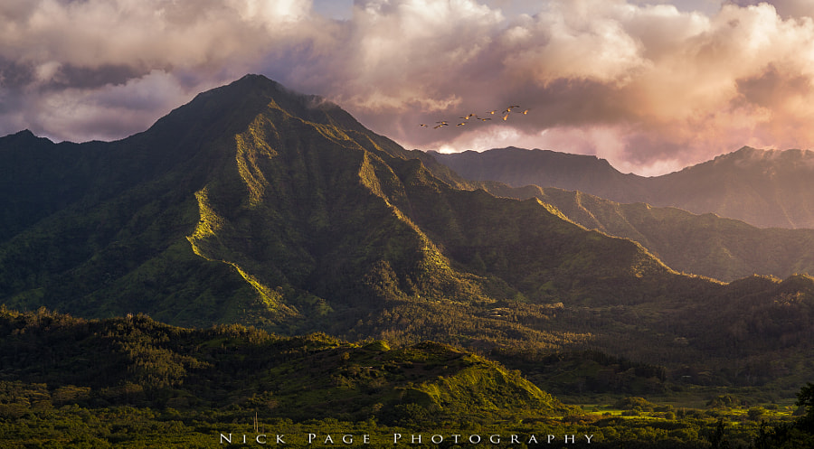 Heart of the Island by Nick Page on 500px.com