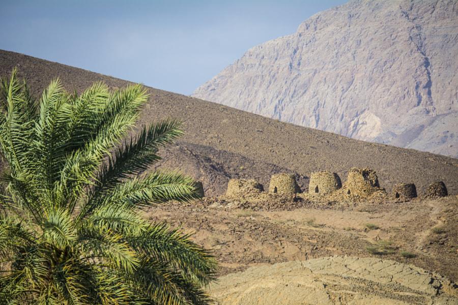 Unesco Ancient Behive Tombs at Al Ain, Wadi Dam