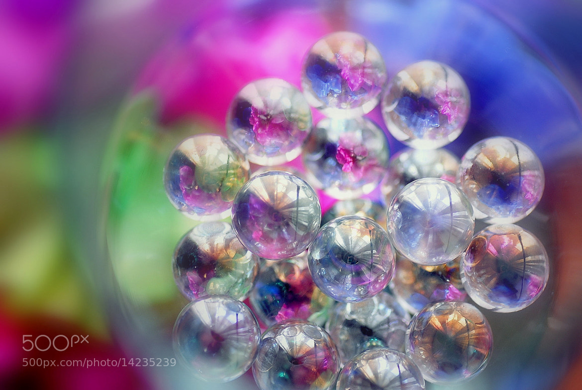Photograph Marbles blossom by Lafugue Logos   on 500px